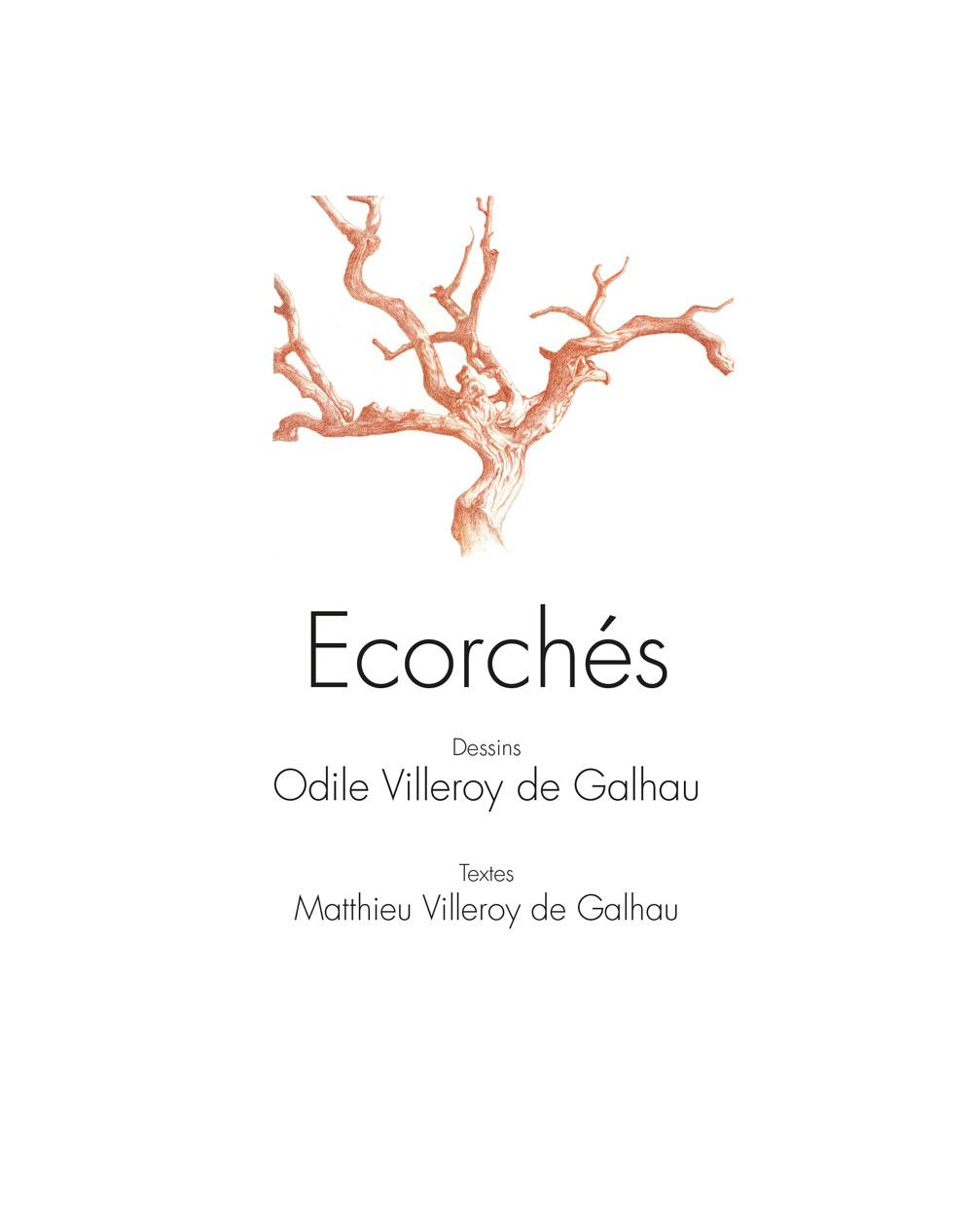 Ecorchés de Odile Villeroy, production Les éditions Orange Claire