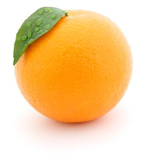 Orange Claire Edition, agence éditoriale et graphique, editeur indépendant et atelier d'expérimentaiton éditoriale