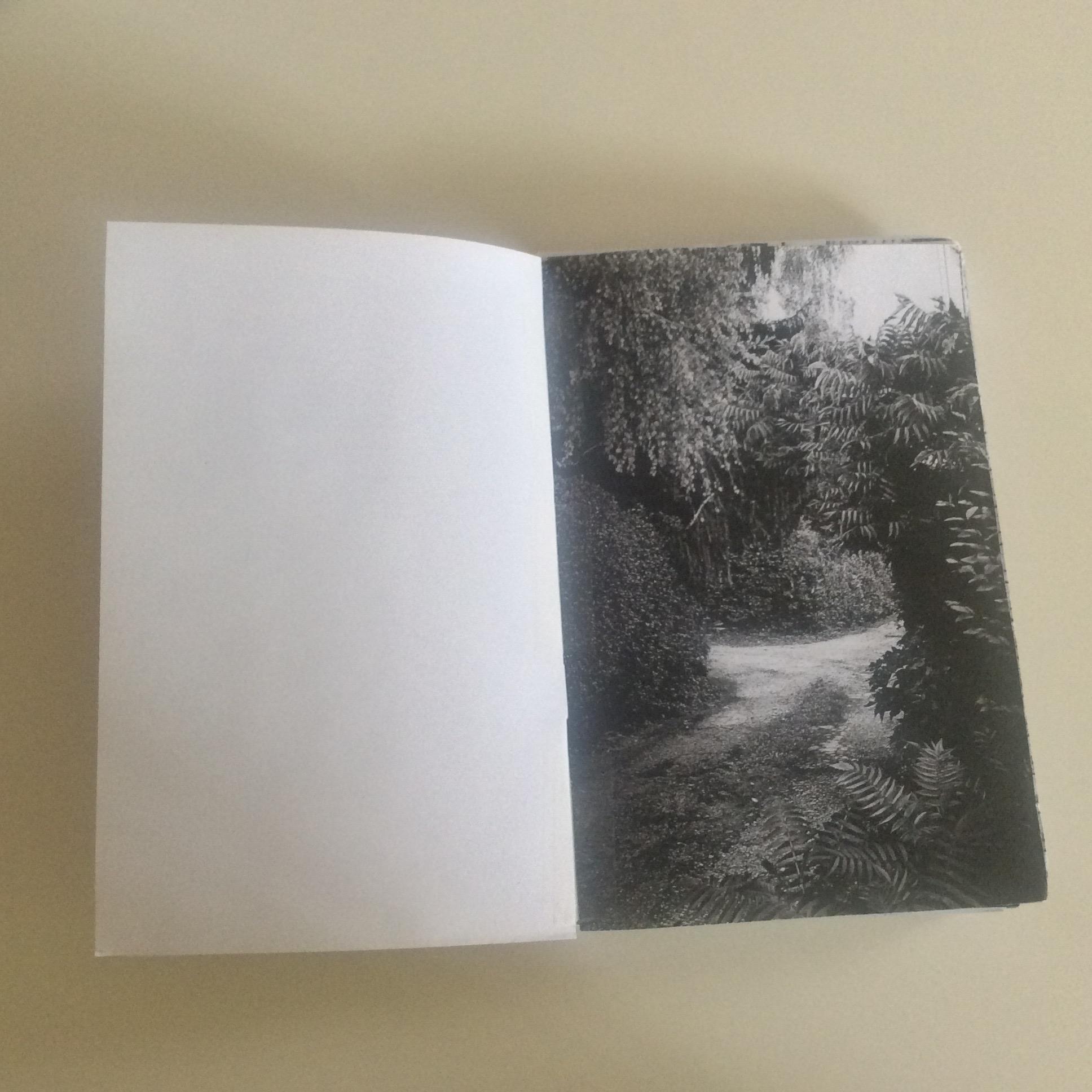 Photographies Sabrina Karp-dessin du livre Claire Jolin-les editions orange claireIMG_1454