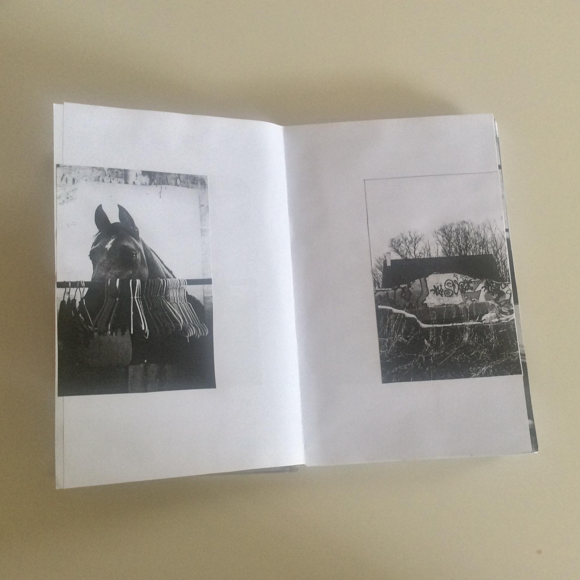 Photographies Sabrina Karp-dessin du livre Claire Jolin-les editions orange claireIMG_1465