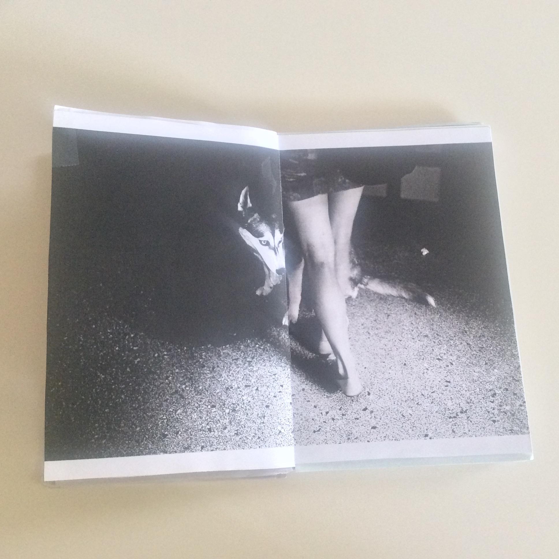 Photographies Sabrina Karp-dessin du livre Claire Jolin-les editions orange claireIMG_1471