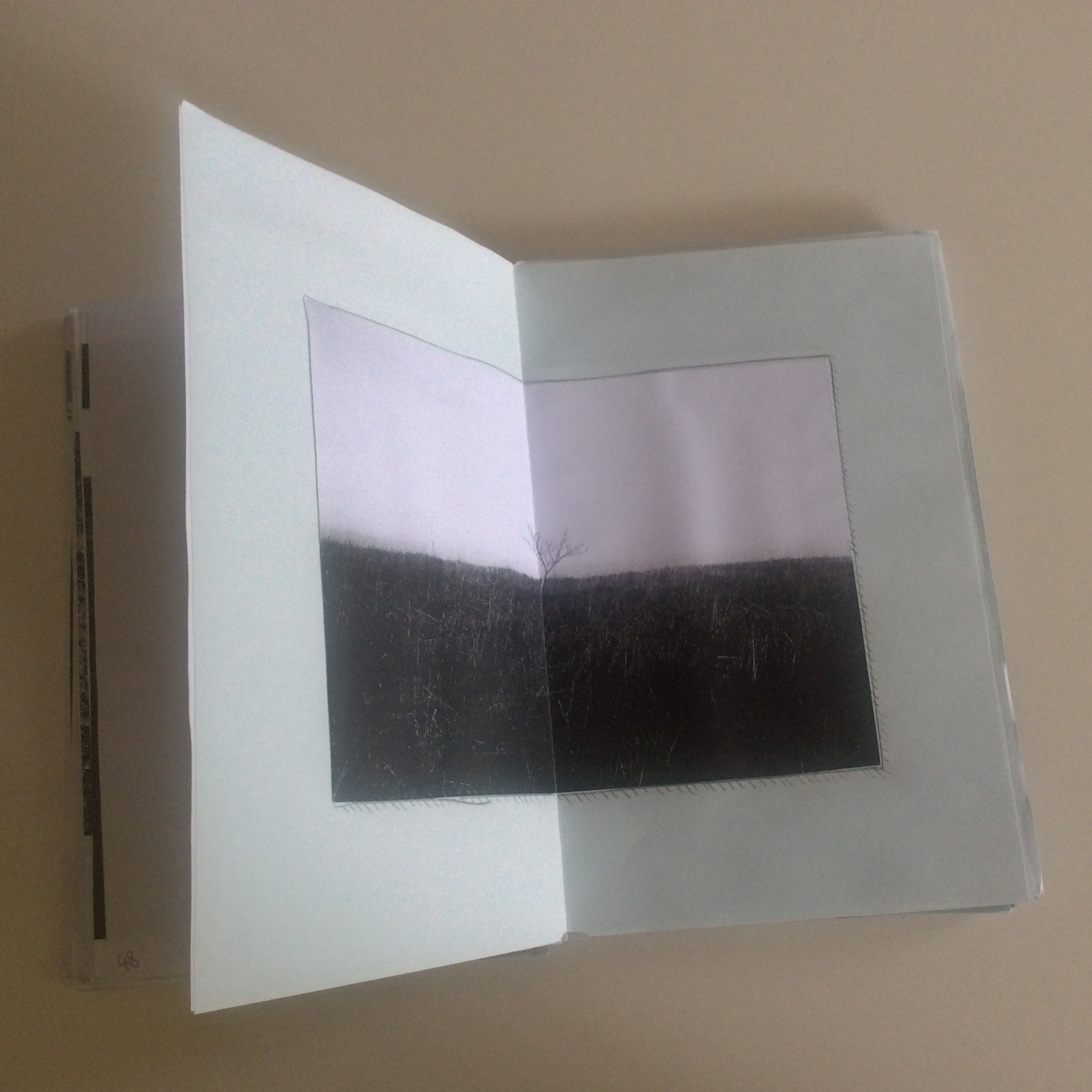 Photographies Sabrina Karp-dessin du livre Claire Jolin-les editions orange claireIMG_1479
