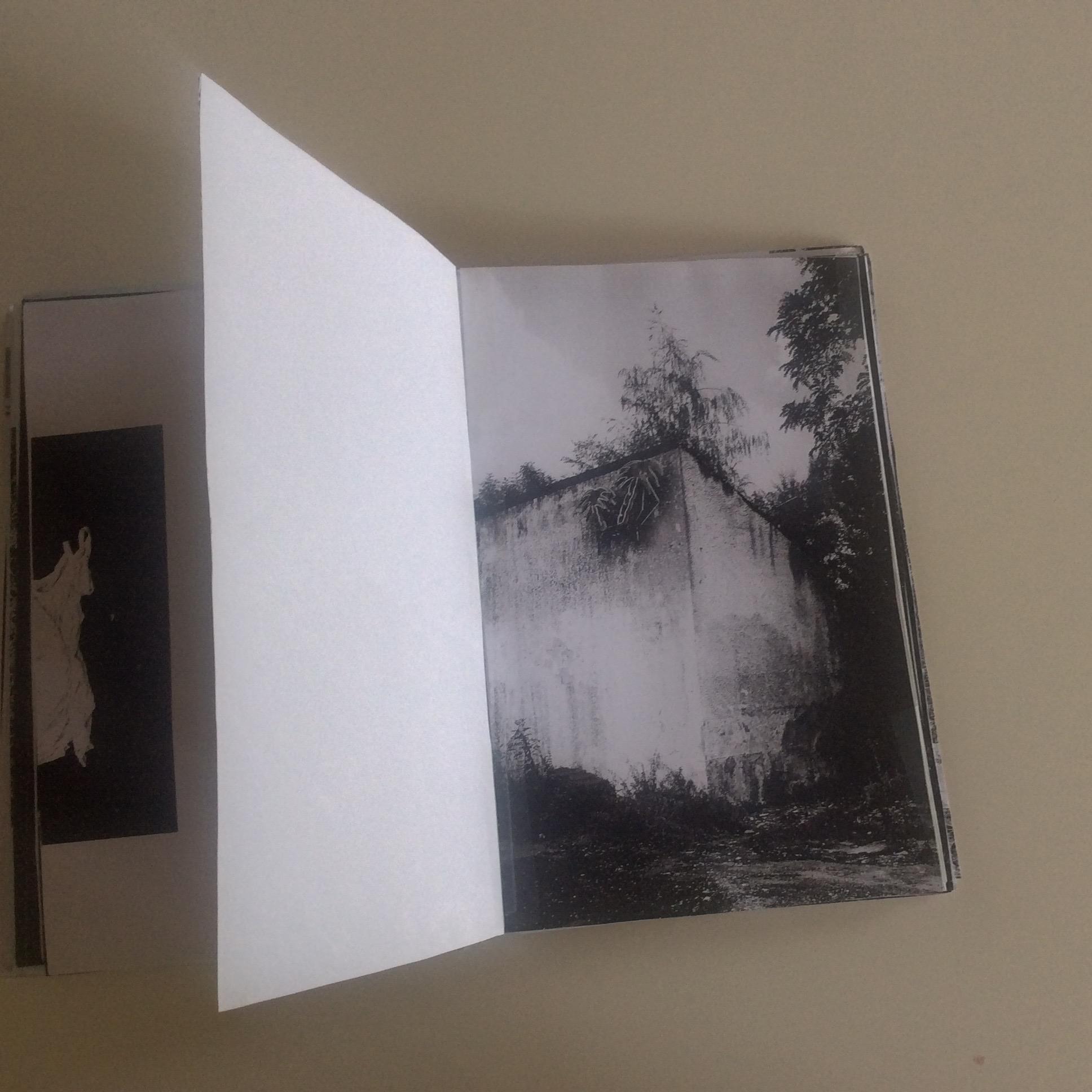 Photographies Sabrina Karp-dessin du livre Claire Jolin-les editions orange claireIMG_1488