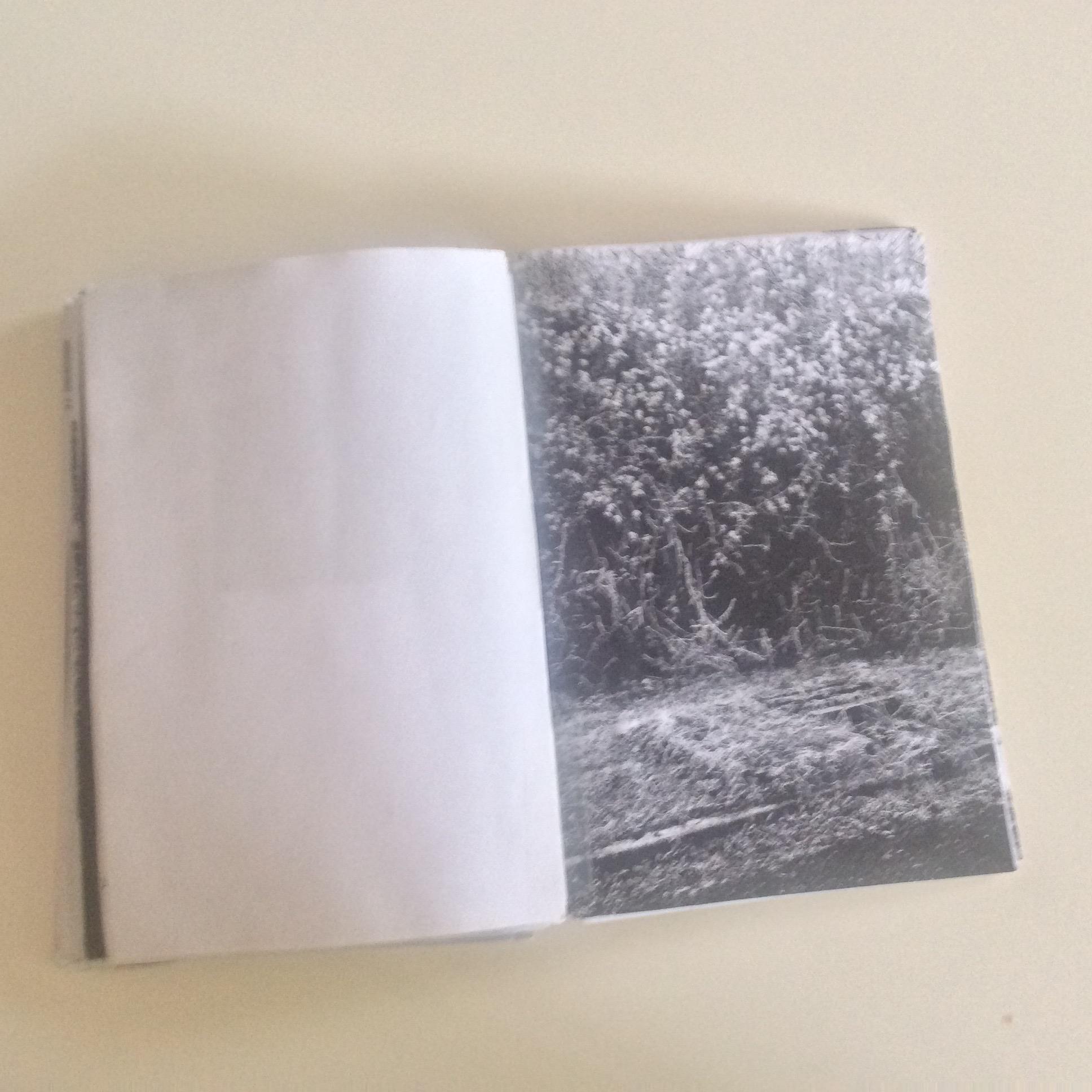 Photographies Sabrina Karp-dessin du livre Claire Jolin-les editions orange claireIMG_1491