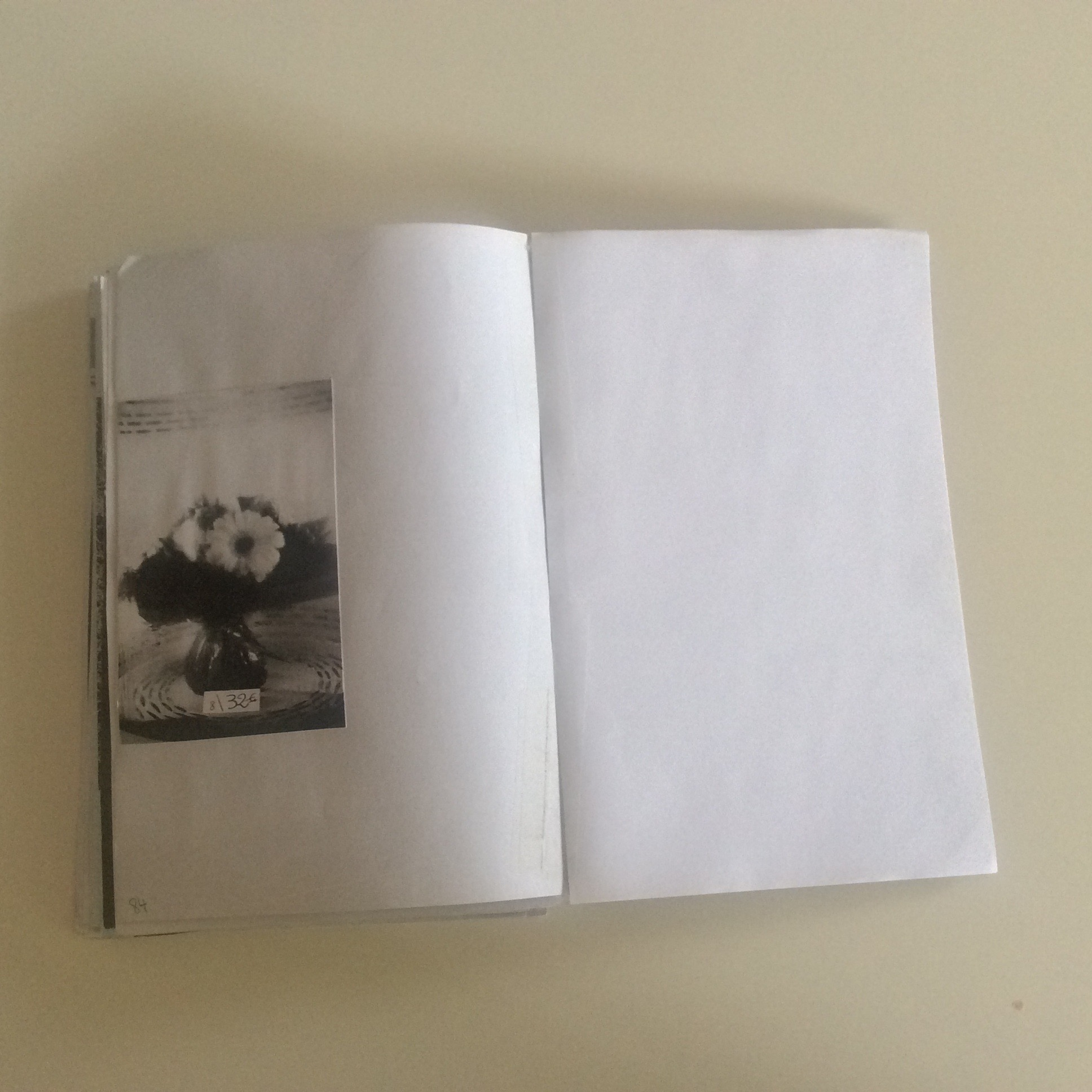 Photographies Sabrina Karp-dessin du livre Claire Jolin-les editions orange claireIMG_1495