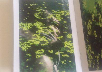 bruges-photographies et dessin du livre Claire Jolin-les editions orange claireIMG_1442