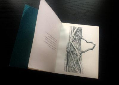 ecorchés-dessin de Odile Villeroy de Galhau-poemes de Matthieu Villeroy de Galhau-dessin du livre Claire Jolin-les editions Orange ClaireIMG_1525