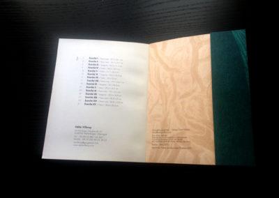 ecorchés-dessin de Odile Villeroy de Galhau-poemes de Matthieu Villeroy de Galhau-dessin du livre Claire Jolin-les editions Orange ClaireIMG_1527